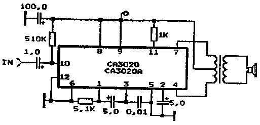 CA3020
